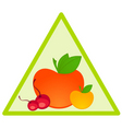 fruit triangle vector image
