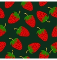 Strawberries hand drawn pattern vector image vector image