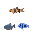 different types of fish cartoon icons in set vector image