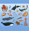 fishes set or sea creature blue whales jellyfish vector image