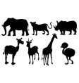 set silhouette exotic animals vector image