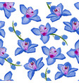 blue orchid floral seamless pattern flowers bloom vector image