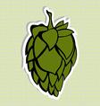 Green Hop Flower Beer ingredient vector image vector image