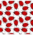 Ladybugs seamless pattern vector image vector image