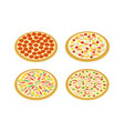 perspective view set pizza on white art vector image