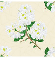 seamless texture twig white rhododendron vector image vector image