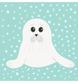 White seal pup baby harp Cute cartoon character vector image vector image