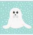 white seal pup baby harp cute cartoon character