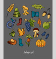 autumn set of different colorful elements hat vector image vector image