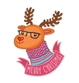 Christmas deer in hipster glasses vector image vector image