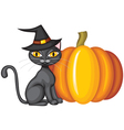 halloween kitty vector image vector image