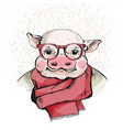 the portrait of a cute piglet in glasses vector image