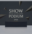 3d podium with soft reflection and flying vector image vector image