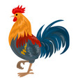 farm cock icon cartoon style vector image