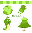 isolated color green group vector image vector image
