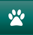 paw print icon on green background dog cat bear vector image vector image