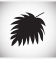 tropic leaf on white background for graphic and vector image