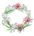 floral frame of white and pink lilies vector image