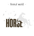 animal world horse gray horse bird background vect vector image