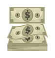 dollar banknotes cash money for payment nominal vector image