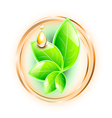 Green glossy leaves vector image vector image