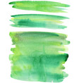 green paint strokes vector image vector image