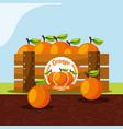 orange fruit always fresh in wood basket vector image