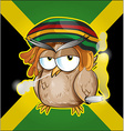 Rastafarian owl cartoon on jamaican flag vector image