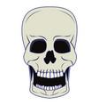 skull human skeleton cartoon isolated symbol blue vector image vector image
