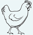 Figure chicken vector image