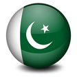 A ball with the flag of Pakistan vector image vector image