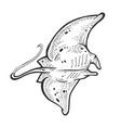 batoidea stingray sea animal engraving vector image vector image