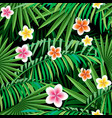 jungle seamless pattern vector image vector image