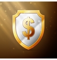 shield with dollar sign vector image vector image