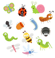 Bug Set vector image vector image