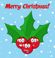 jolly christmas holly berries with leaves vector image vector image