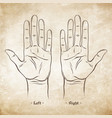 palmistry or chiromancy chart blank template vector image vector image