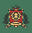 coat of arms with lion head vector image