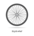 Bicycle wheel isolated vector image vector image