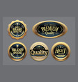 golden badges collection vector image vector image