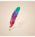 many-coloured feather vector image