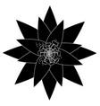 one flower natural floral decoration ornament vector image