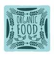 organic food vintage banner vector image vector image
