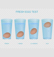 realistic 3d detailed fresh egg test concept card vector image vector image
