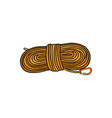 rope flat vector image