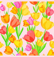 seamless pattern of colored tulips vector image