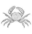 violet land crab vintage vector image vector image