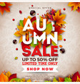 autumn sale design with falling leaves and vector image vector image