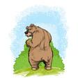 bear near a shrub vector image