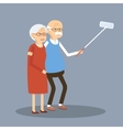 Old Couple Doing Selfie vector image